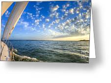 Perfect Evening Sailing On The Charleston Harbor Greeting Card by Dustin K Ryan