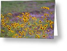 Perky Golden Coreopsis Wildflowers Greeting Card