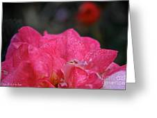 Petal Bling Greeting Card