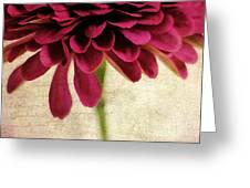 Petales De Fleurs Greeting Card