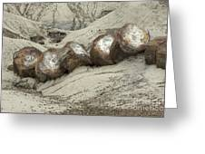 Petrified Forest 1 Greeting Card