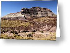 Petrified Forest Badlands Greeting Card