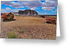 Petrified Forest Np Greeting Card