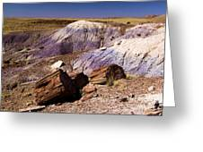 Petrified Logs In The Badlands Greeting Card