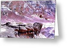 Petrified Wood In The Painted Desert Greeting Card