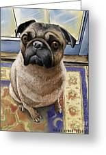 Hungry Pug Greeting Card