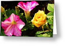 Petunias With A Rosy Neighbor Greeting Card