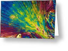 Phenylalanine Greeting Card