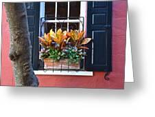 Philadelphia  Alley Window Box Greeting Card by Lori Kesten