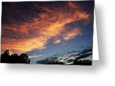 Phoenix In The Sky Greeting Card