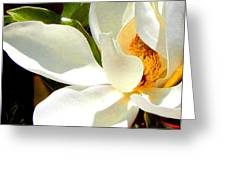Photo For Sydneys Magnolia Painting Greeting Card