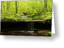 Pickle Spring In Missouri Greeting Card