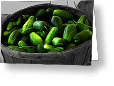 Pickling Cucumbers Greeting Card by Ms Judi