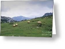 Picos De Europa Greeting Card