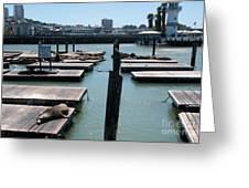 Pier 39 San Francisco Greeting Card