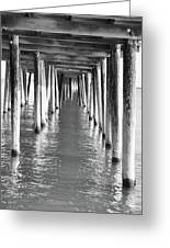 Pier In Greeting Card