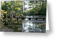 Pier In The Swamp Greeting Card