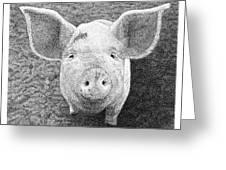 Piglet Greeting Card