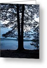 Pine Silhuette Greeting Card