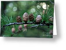 Pinecone Party Line Greeting Card