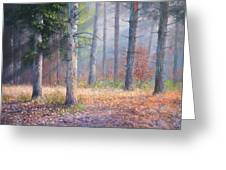 Pinewoods Greeting Card
