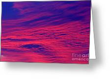 Pink And Purlple Morning Greeting Card