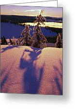 Pink And Purple Sunrise Shadows Of Snow Greeting Card