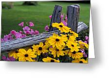 Pink And Yellow Flowers Greeting Card