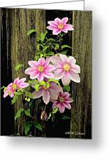 Pink Climatis Flower Greeting Card