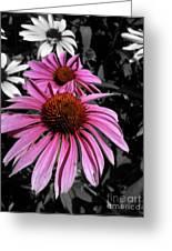 Pink Cutout Greeting Card