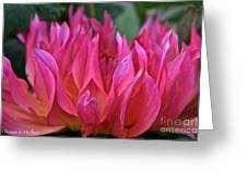 Pink Flames Greeting Card