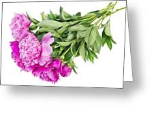 Pink Floral Summer Greeting Card