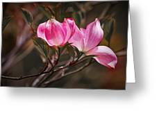 Pink Flower Tree Blossoms No. 247 Greeting Card
