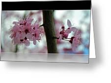 Pink Flowering Tree In Spring Framed Greeting Card