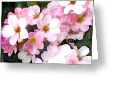 Pink Flowers With Bee Greeting Card