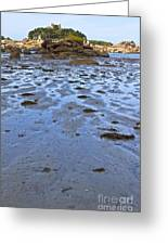 Pink Granite Island In Low Tide Greeting Card
