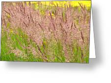 Pink Grass Greeting Card