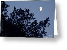 Pink Half Moon Photograph Greeting Card