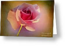 Pink Lady Greeting Card