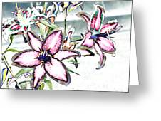Pink Lilies Greeting Card