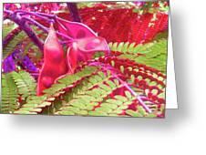 Pink Mimosa Greeting Card by Juliana  Blessington