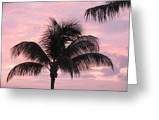 Pink Palm Greeting Card