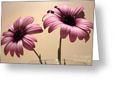 Pink Peas In A Pod Greeting Card