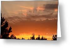 Pink Rays And Orange Skies Greeting Card