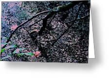 Pink River Greeting Card