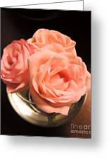 Pink Roses In A Globe Greeting Card