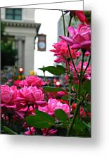 Pink Roses In The City Greeting Card