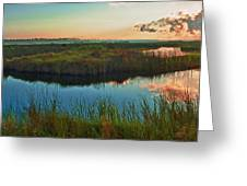 Pink Swamp Sunrise Greeting Card