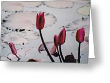 Pink Water Lily Buds Greeting Card
