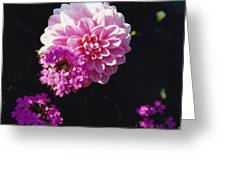 Pinkish Purplish Greeting Card